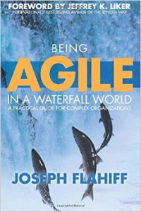 Being Agile in an Waterfall World